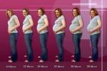 Pregnancy-Progression
